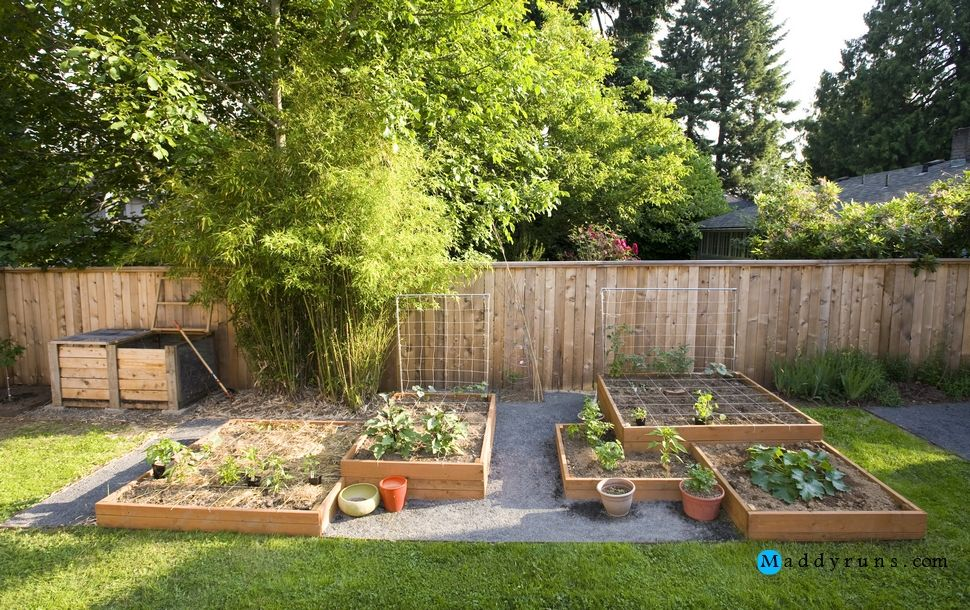 Gardening:Inexpensive Xeriscaping Backyard Design ... on small desert yards, small cottage yards, small patio yards, small zen yards, small tropical yards, small concrete yards, small grass yards, small natural yards, small modern yards,