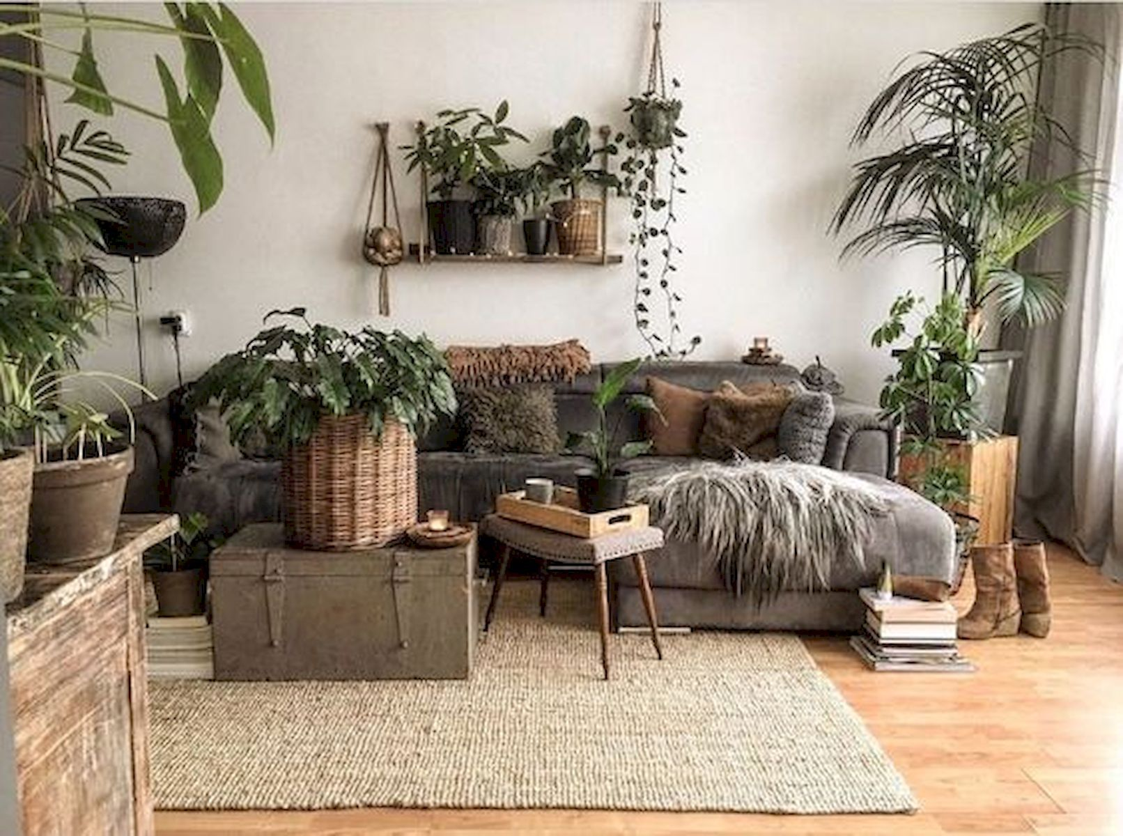 Beautiful Ways To Decorate Indoor Plant in Living Room images