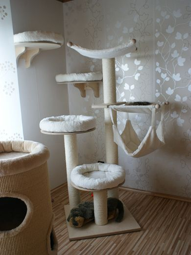 m chte hier mal unseren kratzbaum zeigen und auch die kratz und schlummertonen bei uns wird. Black Bedroom Furniture Sets. Home Design Ideas