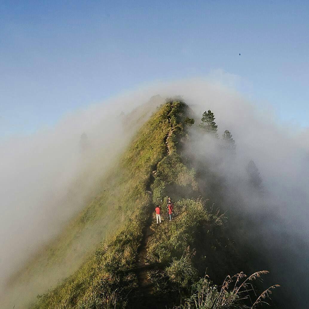 Jalani Secara Perlahan Hingga Menggapai Puncak Loc Gunung Andong Regranned From Linggabinangkit Kabut Kenan Fotografi Pemandangan Pemandangan Fotografi