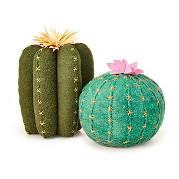 Photo of Cactus Bloom Throw Pillows | Fun Home Decor; Handmade Wool Accents