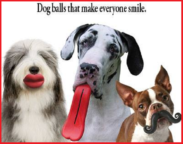 Funny Dog Balls now at Lofty Pursuits!
