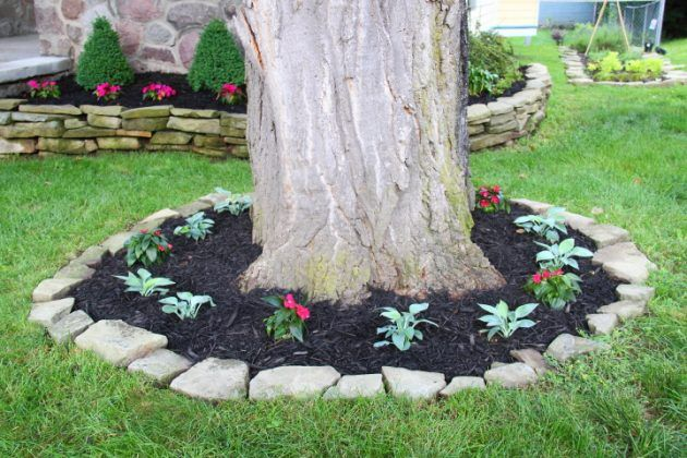 15 Beautiful Ideas For Decorating The Landscape Around The Trees Landscaping With Rocks Landscaping Around Trees Landscaping Inspiration