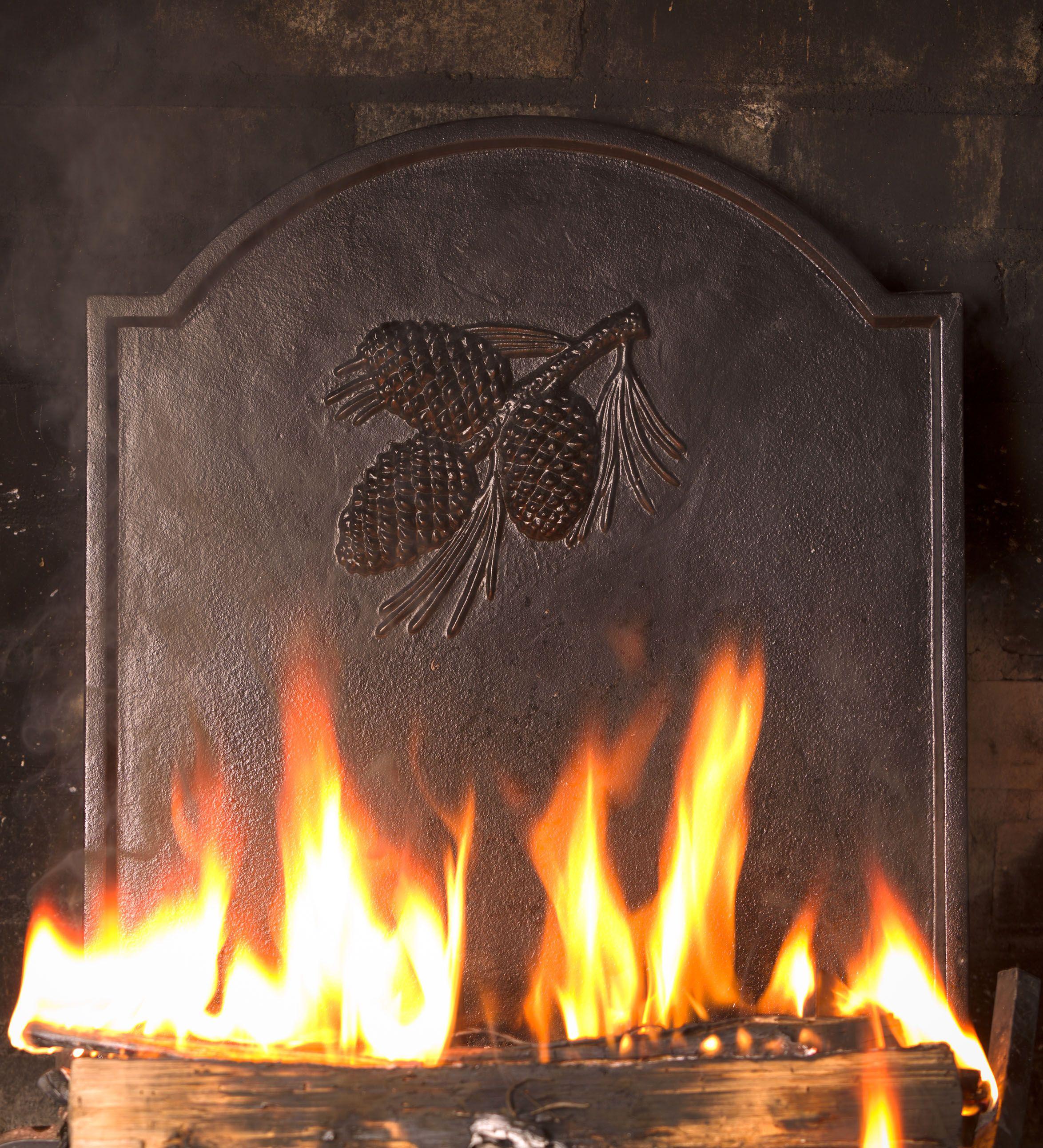 cast iron fireback grate pinecone pinterest pine cone pine