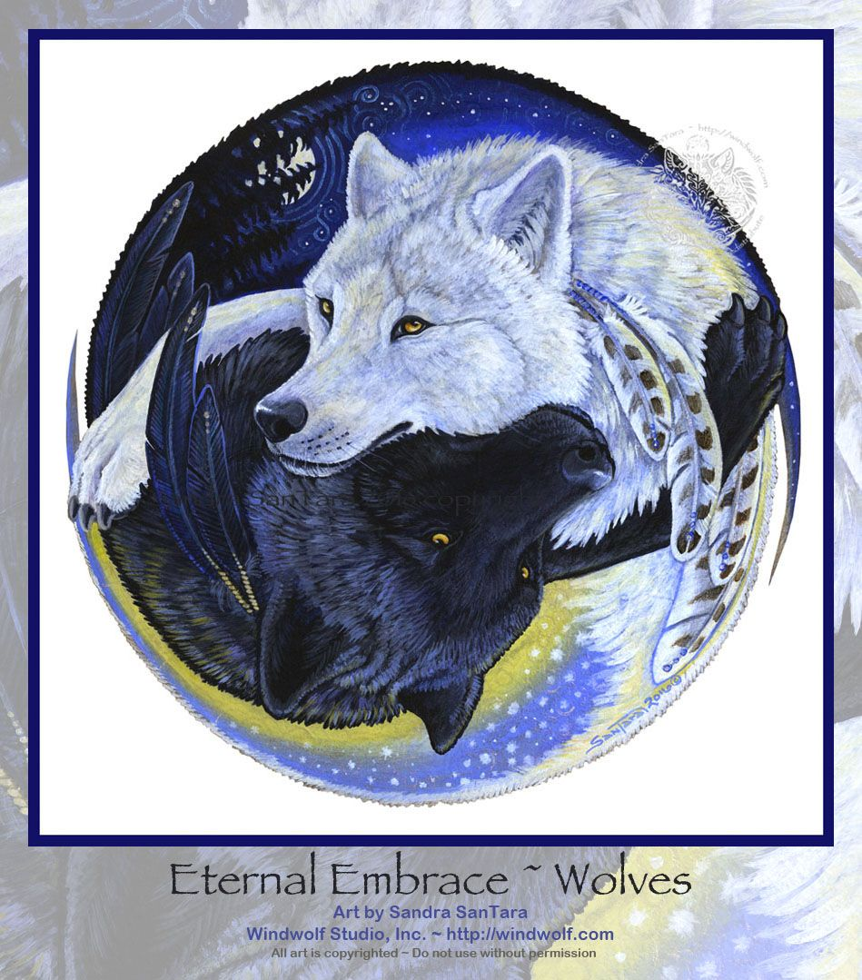 Yin Yang Tattoo Dark Skin: Pin About Yin Yang Wolf And Wolf Artwork On Painted Drums