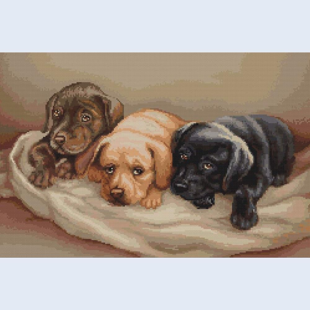Three Dogs - counted cross-stitch kit  - Luca-S