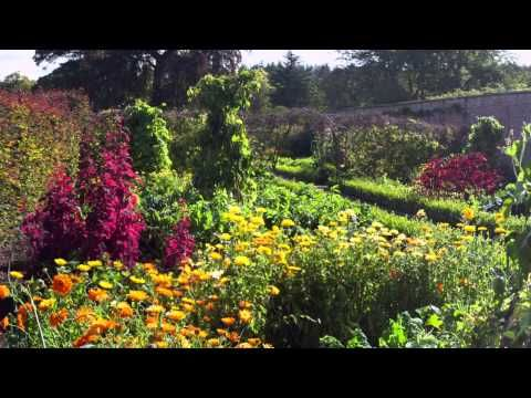 Garden 11 Hours With Cathedral Choir Subtle Singing