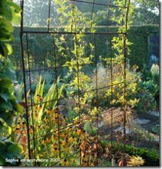 Fers A Tout Faire Pour Pascal Pergola Garden Et Small Space