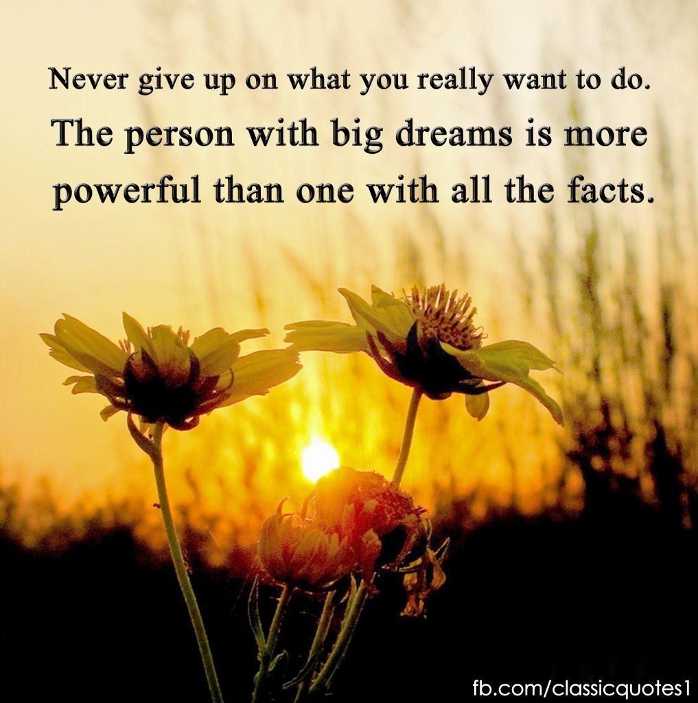 Never Give Up On Life Quotes Never Give Up On What You Really Want To Dothe Person With Big