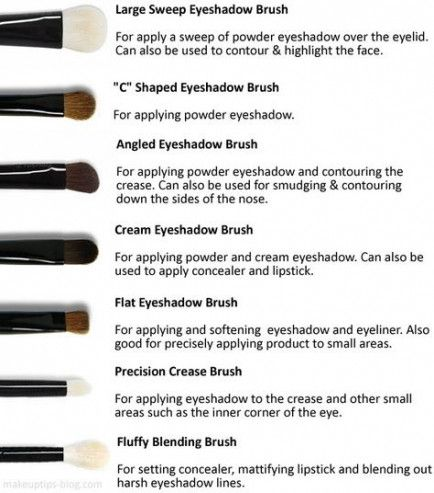 makeup tips for beginners cheat sheets eye shadows 61