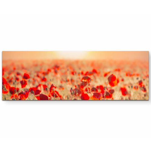 Poppy Field In The Sunset Photographic Print On Canvas East Urban Home Size 120cm L X 40cm W Kids Art Wall Frames Flower Wall Art Water Droplets Art