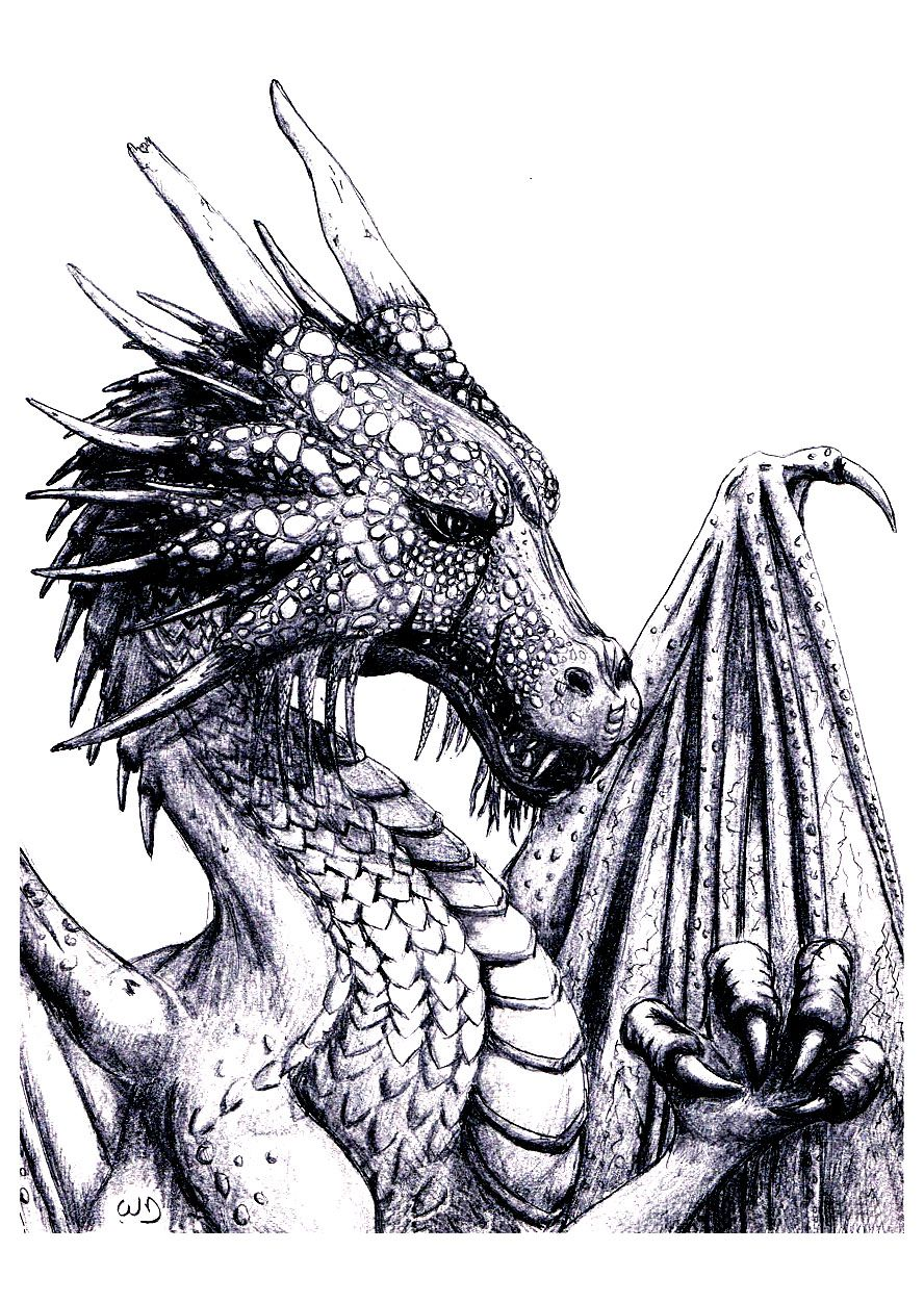 Free coloring page coloring-adult-dragon. An impressive Dragon to ...