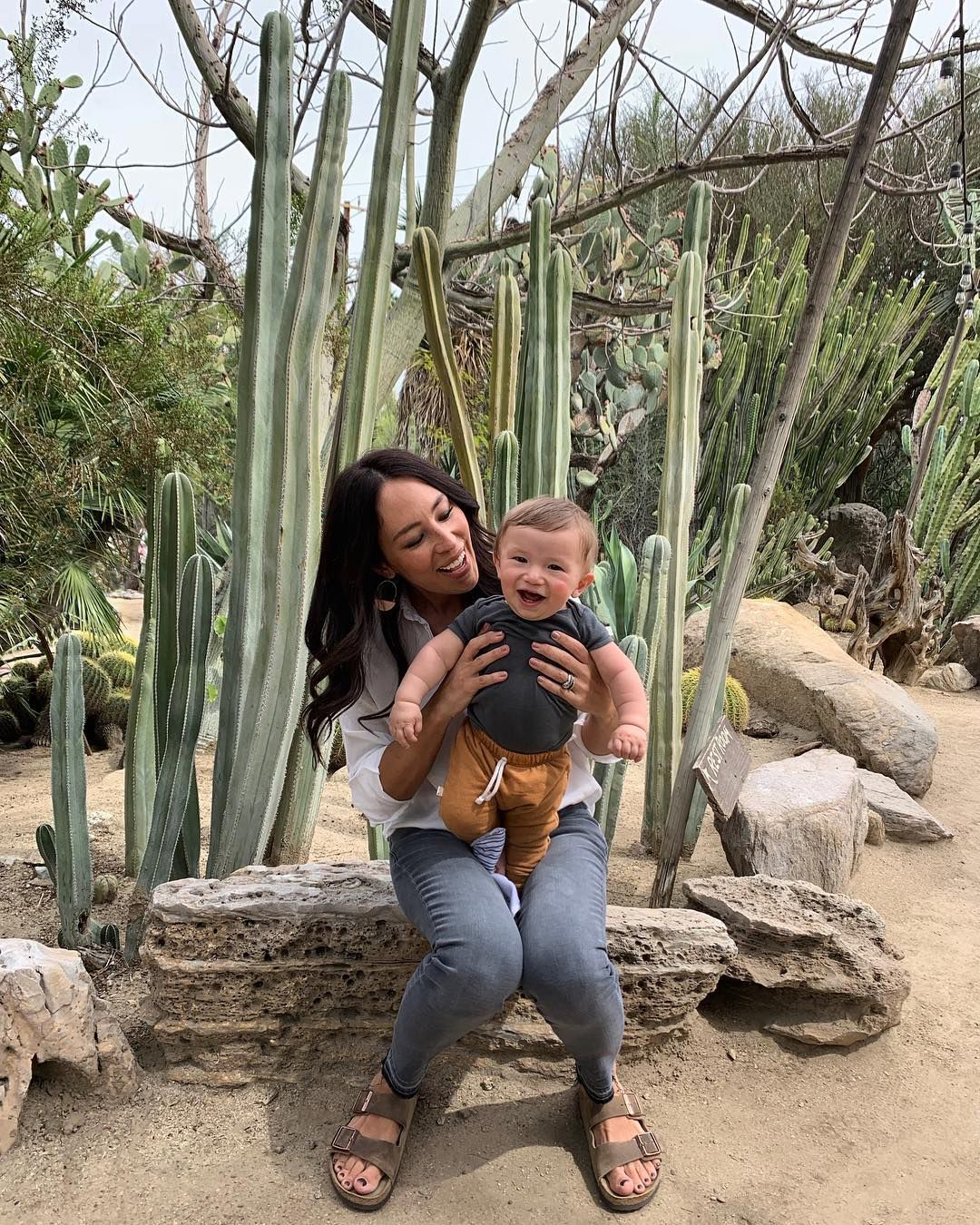 Everything You Need To Know About Joanna Gaines Joanna Gaines Instagram Joanna Gaines Baby Joanna Gaines Family,Best Artificial Christmas Trees For Heavy Ornaments