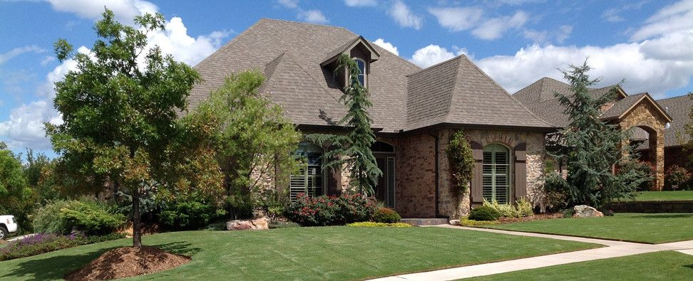Landscaping Evergreens For Oklahoma Google Search