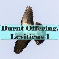 Burnt Offering. Leviticus 1 by Looking for that blessed hope, on SoundCloud