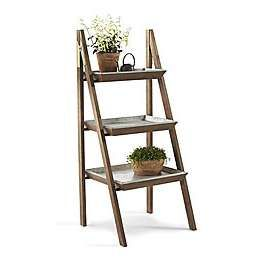 Coping With Physical Chaos Aka Clutter The Furniture Piece Display Shelves Ladder Display Shelves