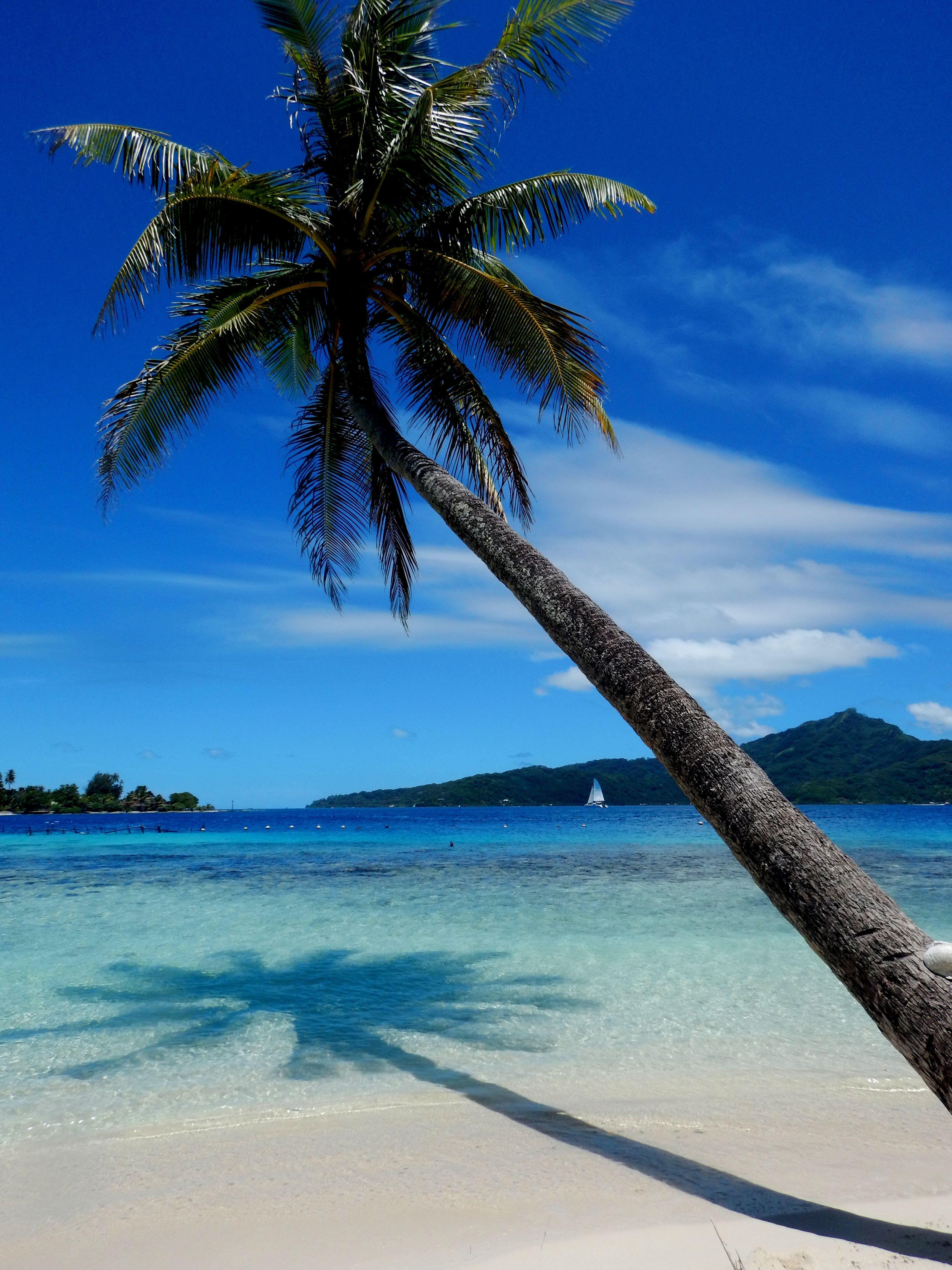 Raiatea, French Polynesia Oceania travel, Australia