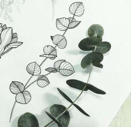 Super Plants Sketch Pothos 37 Ideas