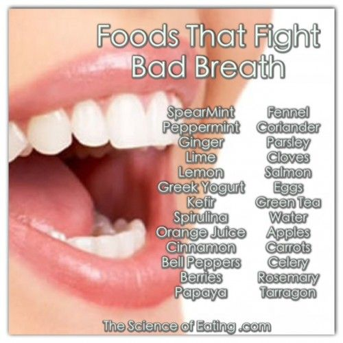 The mouth is a dirty place as more than 600 kinds of bacteria live there. Food particles between your teeth and on your tongue produce smelly gases when digested, with the most offensive being sulfur compounds formed during the breakdown of proteins, garlic & onions. Use the foods below to help counteract this issue, they work like a charm!