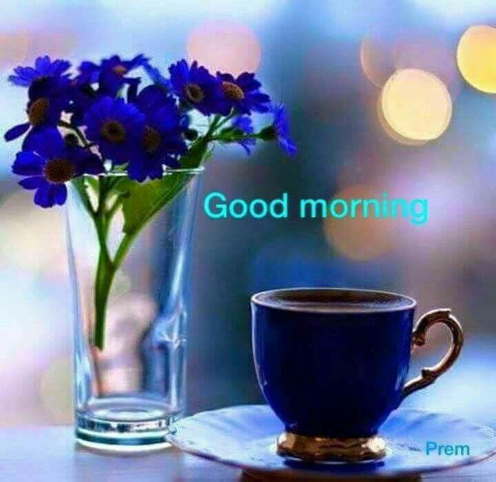 Good Morning, Morning