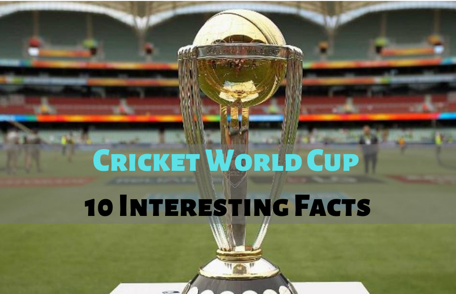 Dotinfopoint Is A Platform That Provides You An Information Updates Like Facts Study Material And Much More Cricket World Cup World Cup First World Cup