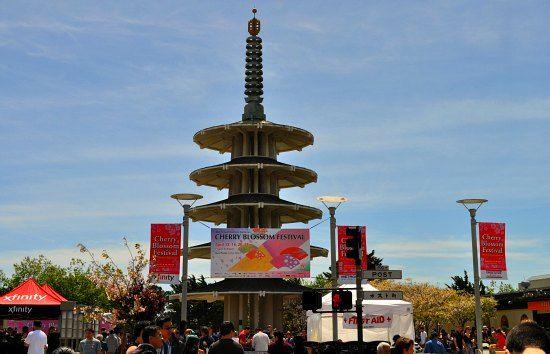 San Francisco Cherry Blossom Festival 2021 Sf Japantown Cherry Blossom Festival Cherry Blossom Blossom