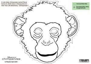 DisneyNature Chimpanzee