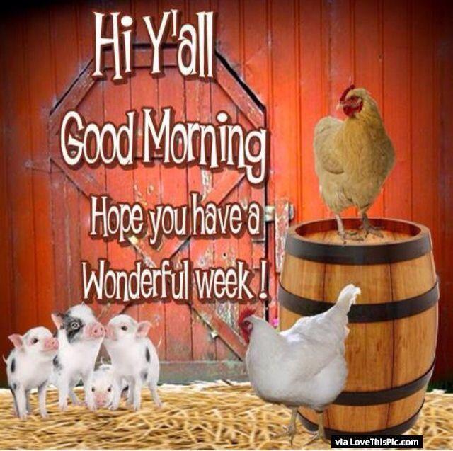 Hi Good Morning Quotes: Hi Yall Hope You Have A Wonderful Week Monday Good Morning