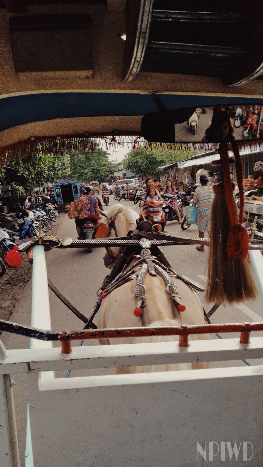 Gig at Traditional Market Bali, Karang, Kuda