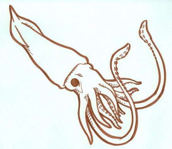Family Sea Giant Squid By Digitalduckie Jpg 600 520 Squid