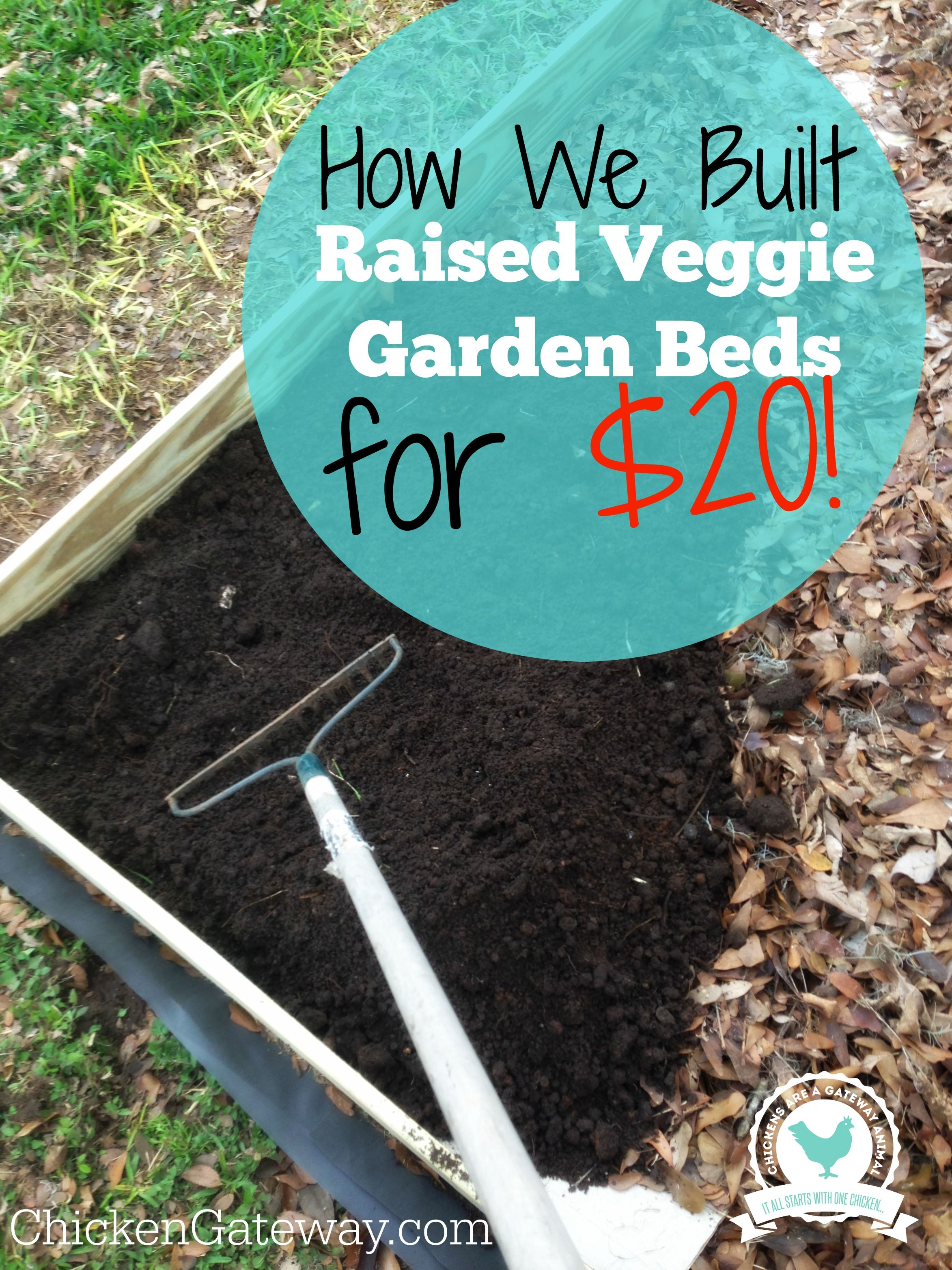 cheap raised vegetable garden beds