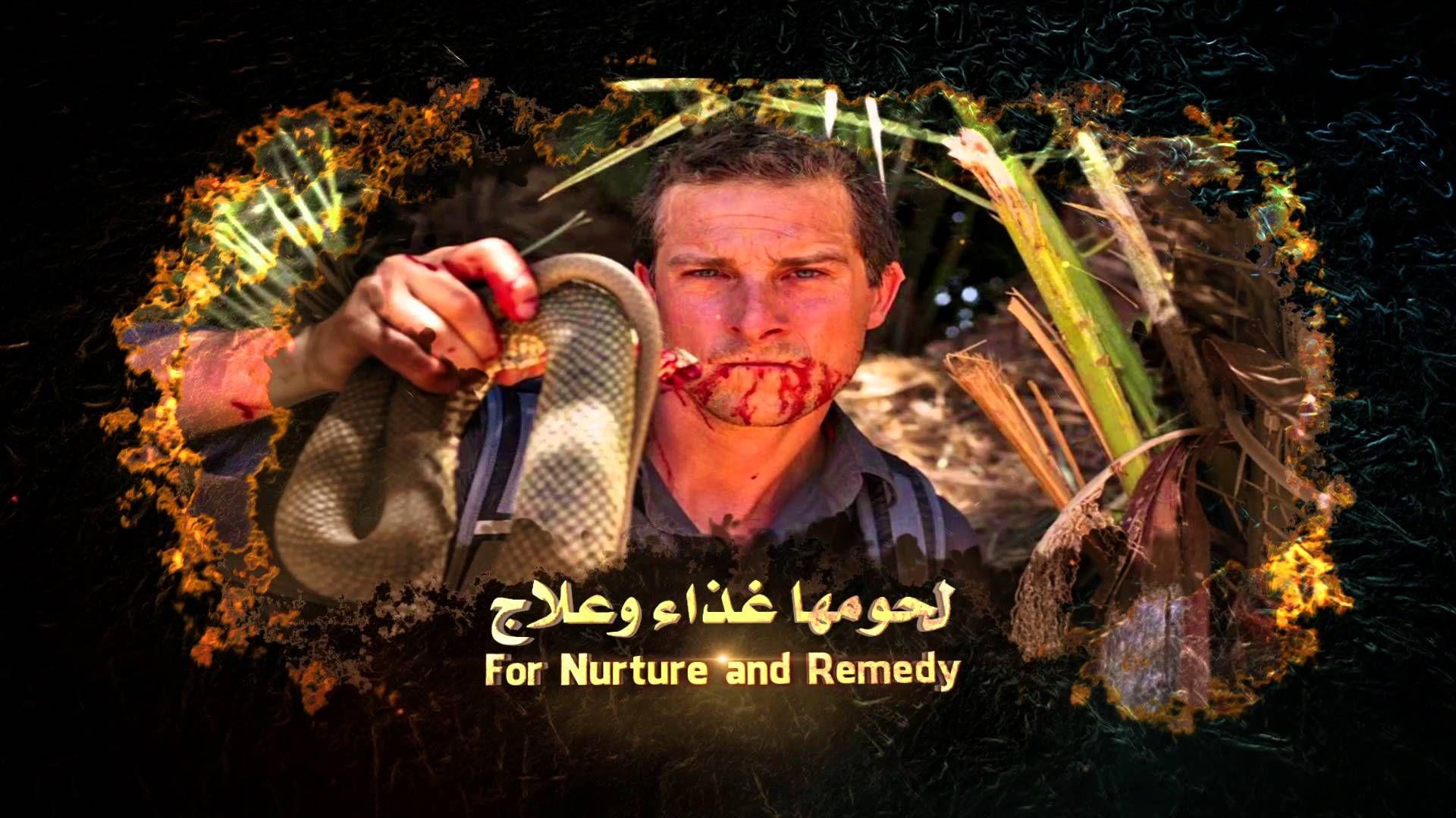 كامل بدوي عالم الثعابين الثعابين والخرافات Kamel Badawi World Of Snakes Snakes Myths 15 World Poster Movie Posters
