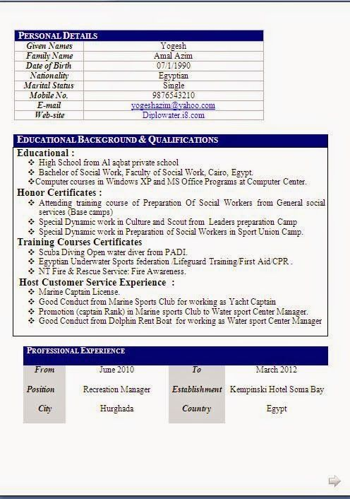 download cv format doc Sample Template Example ofExcellent - how to write a personal profile for a resume