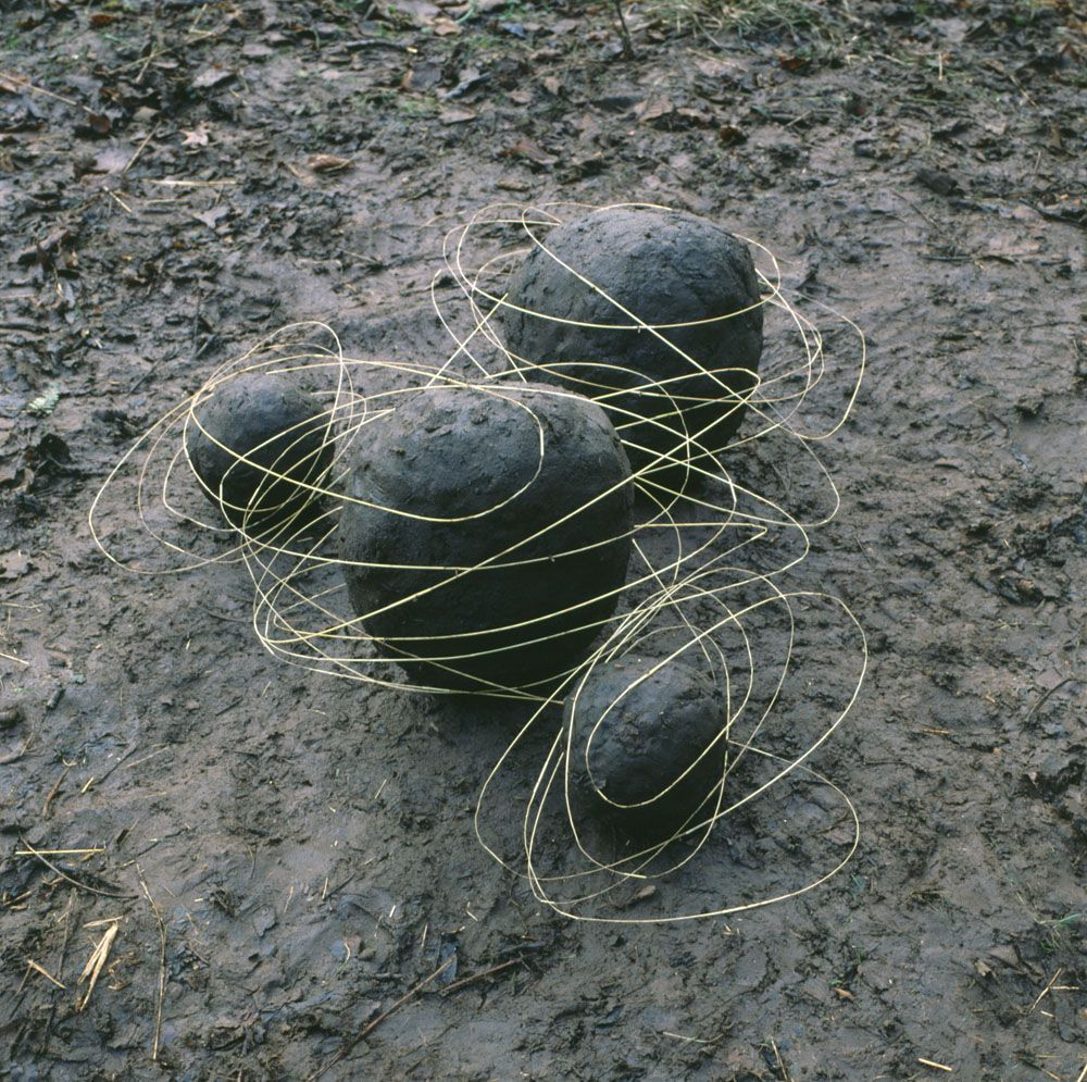 Top Les oeuvres dans la nature d'Andy Goldsworthy | Land art andy  YJ21