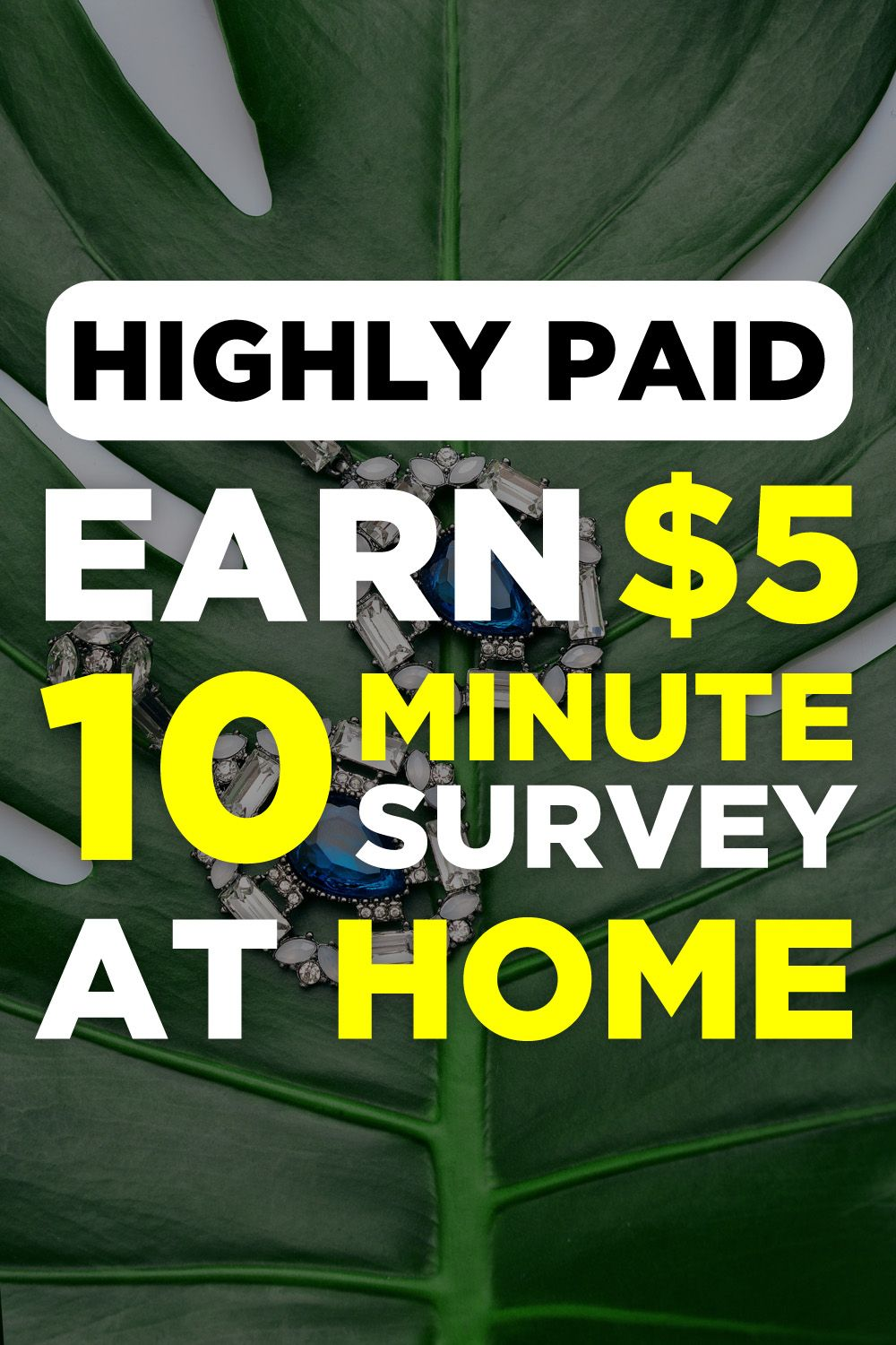 Earn  5 For 10 Minute Survey  Goldopinions