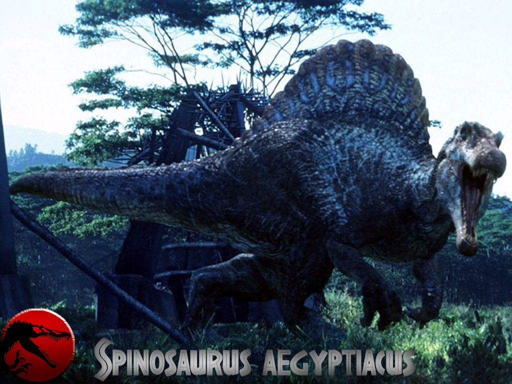 Jurassic Park Wallpaper Dinosaurs 1024×768 Jurassic Park 3