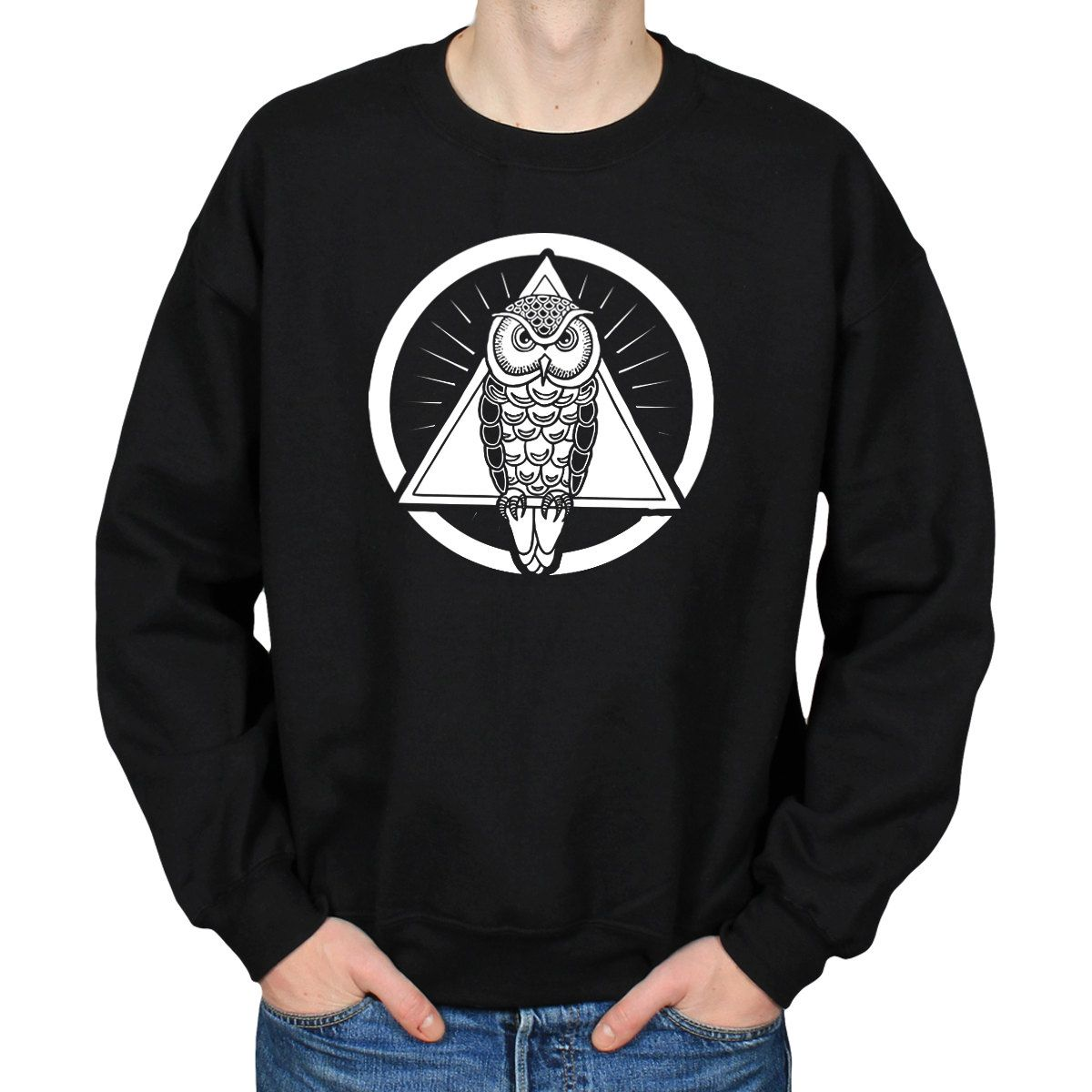 Owl print sweatshirt owl of minerva goddess of wisdom sweater owl print sweatshirt owl of minerva goddess of wisdom sweater illuminati nwo occult clothing cosy fleece lined crewneck slouchy jumper biocorpaavc