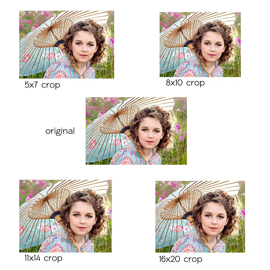 different crop size examples Amazing photography