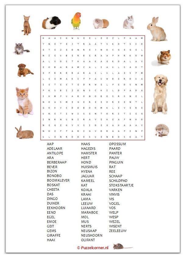 Woordzoeker Dieren Thema Dieren English Words