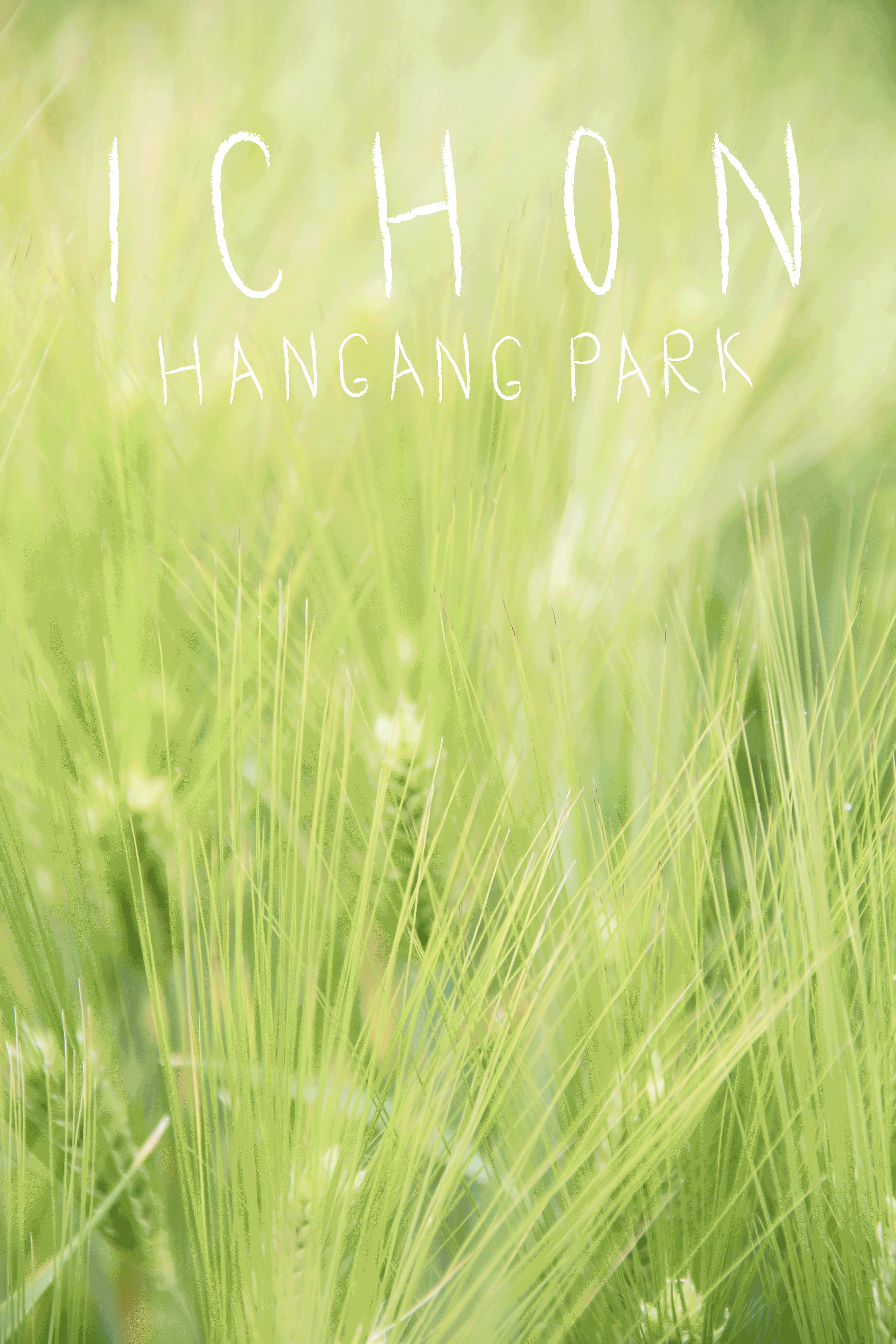 Photo Essay: Ichon Hangang Park (이촌 한강공원), Seoul.