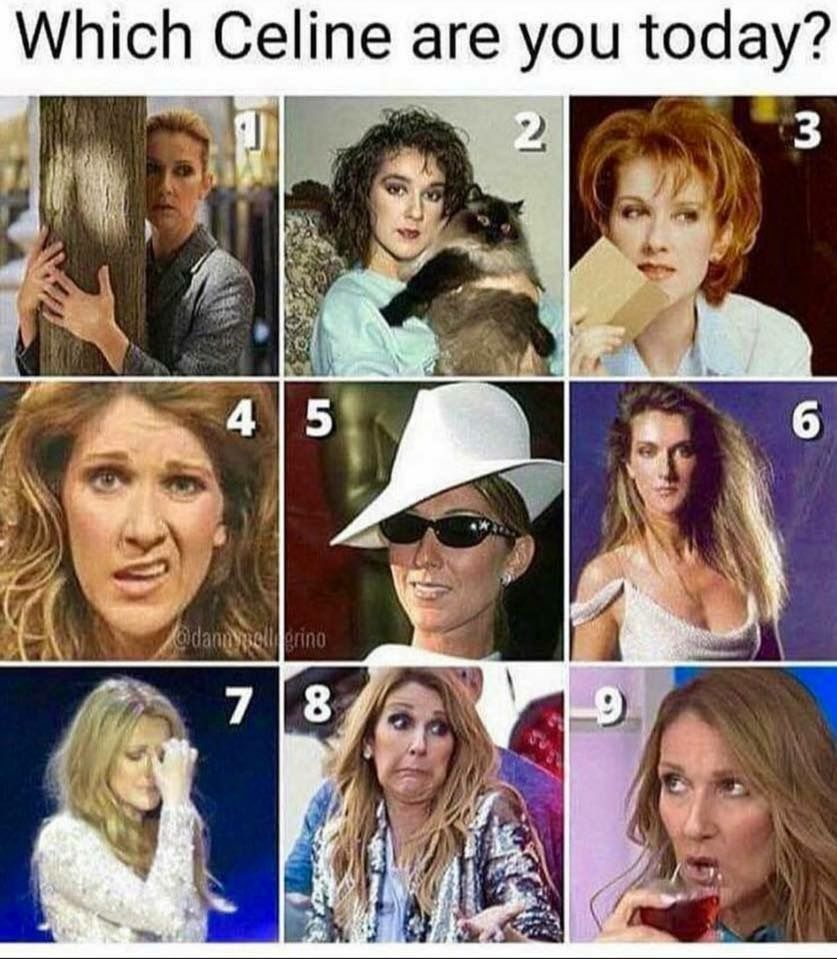 Pin By Natalia Caceres On My Idol Celine Dion Celine Dion Singer Celebrities