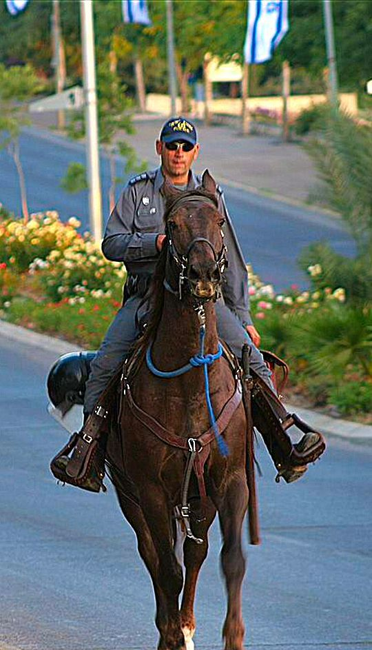 Police . Jerusalem