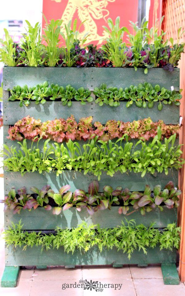 Pallet Planter Ideas That Stylishly Bring Upcycling To Your Garden Garden Therapy Herb Garden Pallet Vertical Pallet Garden Pallet Planter