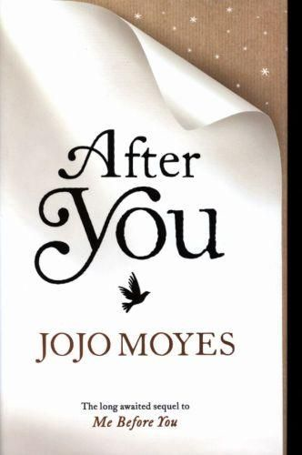 After You (the Sequel to Me Before You)