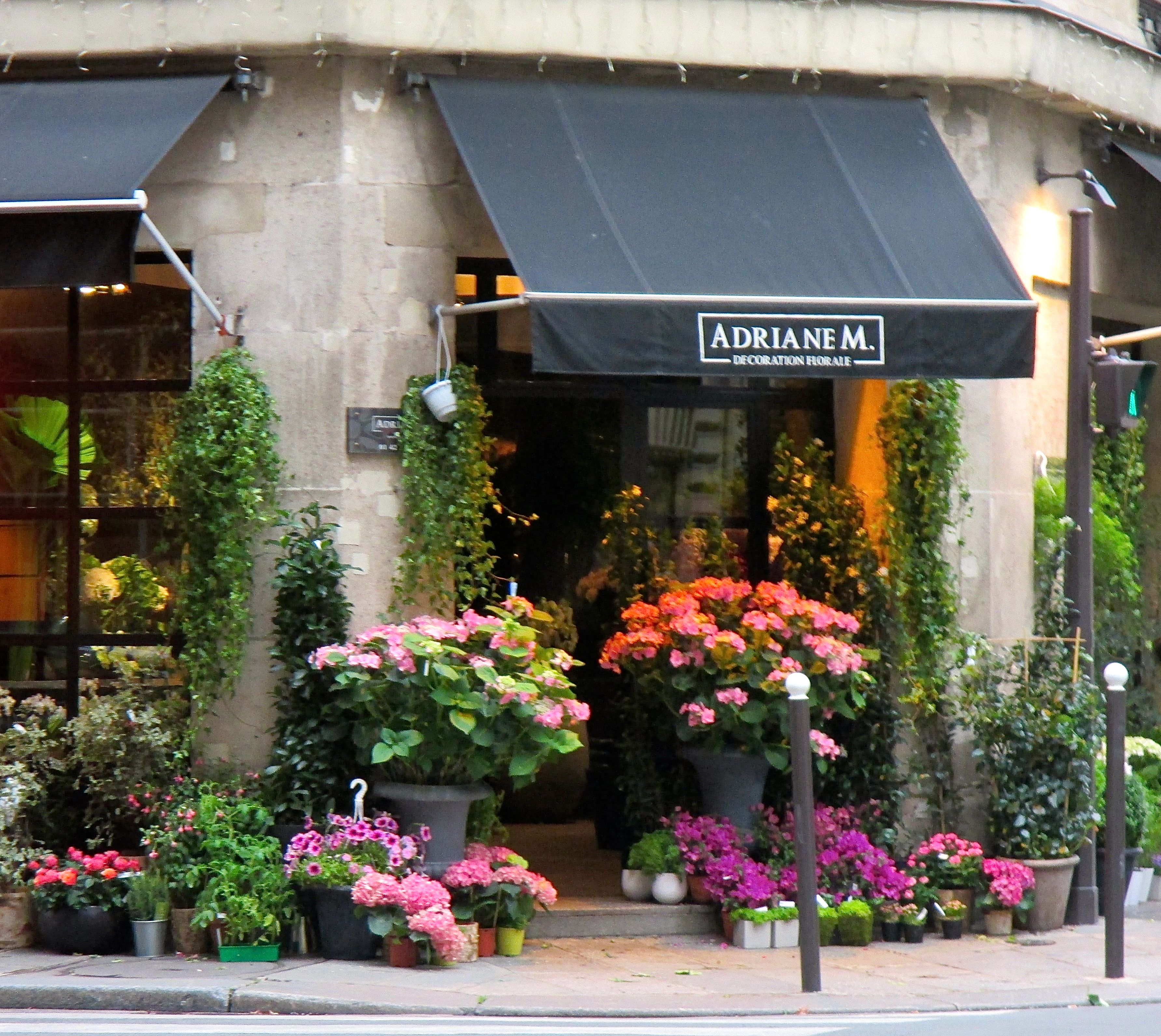 Flowers beautiful flowers pouring out of a corner flower shop in flowers beautiful flowers pouring out of a corner flower shop in paris france izmirmasajfo Gallery