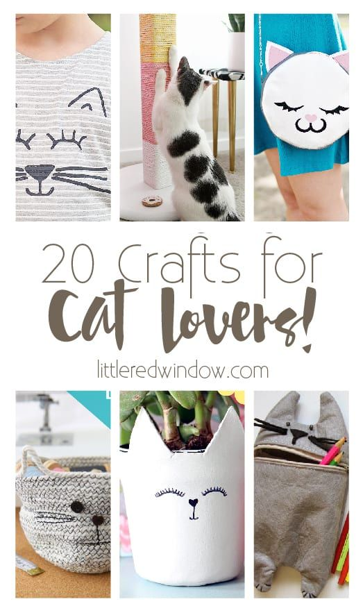 20 Crafts for Cat Lovers! - Little Red Window