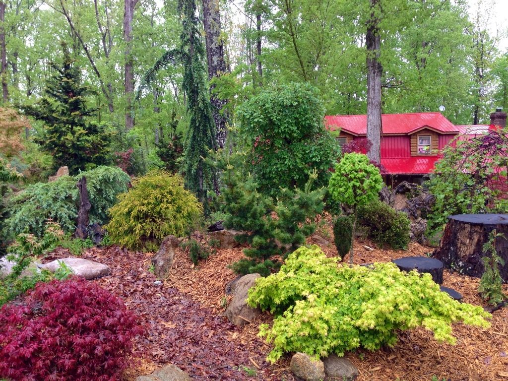 The vista garden conyers ga will be part of the acs for Garden design with japanese maple