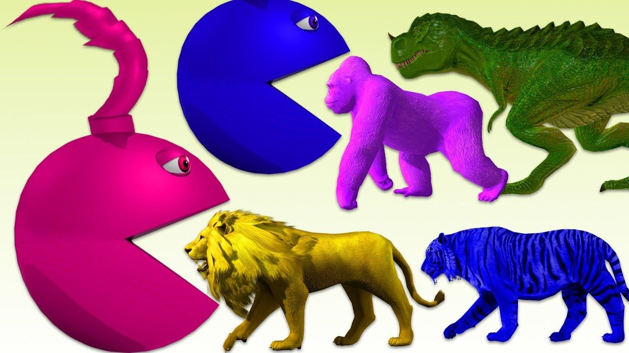 Learn Colors With Animals And Pacman Rhymes For Kids Gorilla Dinos Rhymes For Kids Learning Colors Animals