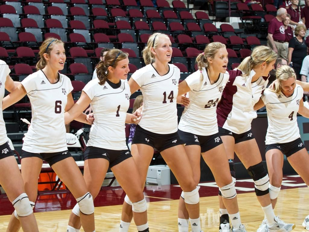 Texas A M Volleyball Google Search Volleyball Texas A M Texas