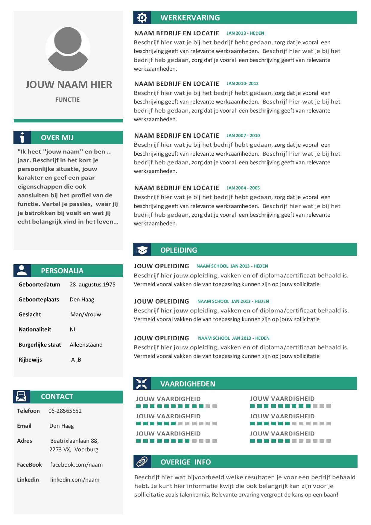 Een overzichtelijk, uniek, strak en duidelijke CV | Moderne Cv\'s en ...